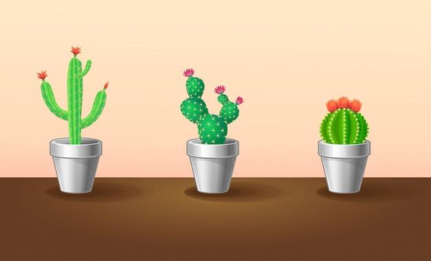 Decoratieve exotische planten set Gratis Vector