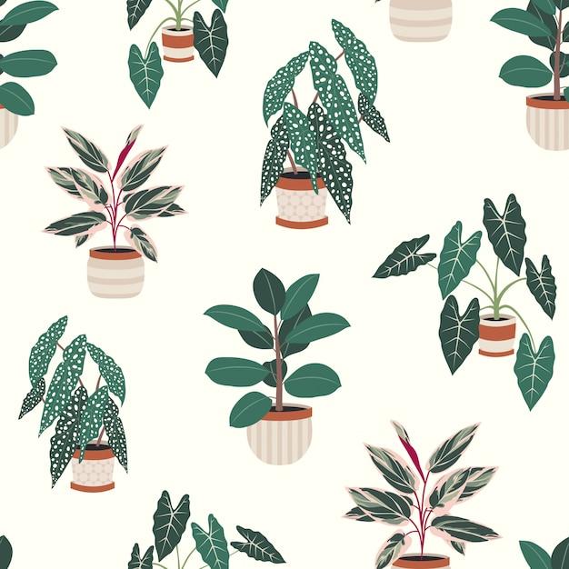 Decoratieve kamerplanten in potten naadloos patroon Premium Vector