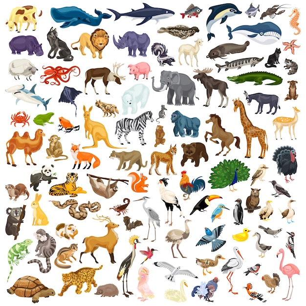 Dieren icon set Premium Vector