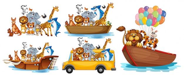 Dieren op verschillende soorten transport Gratis Vector