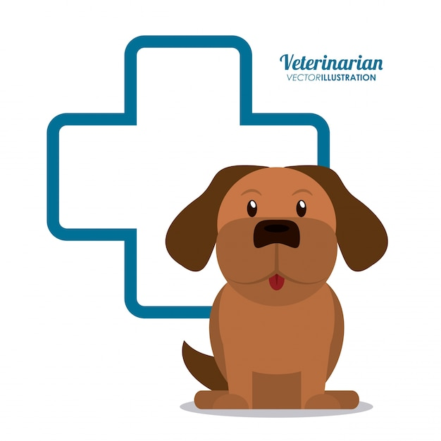 Dierenarts huisdier kliniek pictogram Premium Vector
