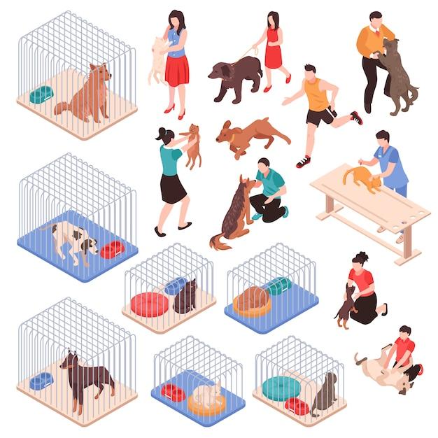 Dierenasiel met honden en katten in kooien menselijke karakters met huisdieren isometrische reeks geïsoleerde vectorillustratie Gratis Vector