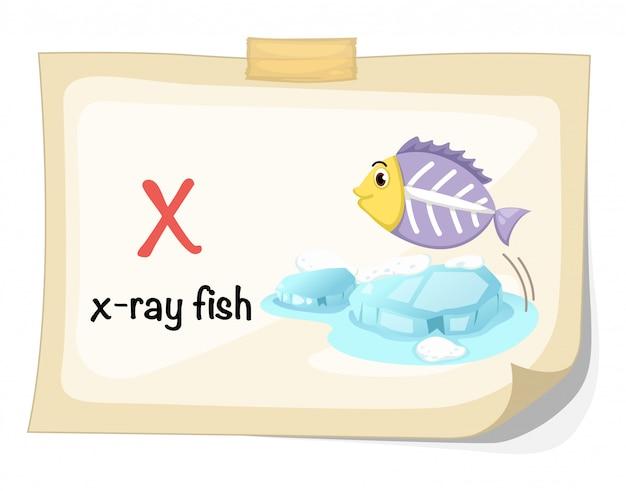 Dierlijke alfabet letter x voor x-ray vis illustratie vector Premium Vector