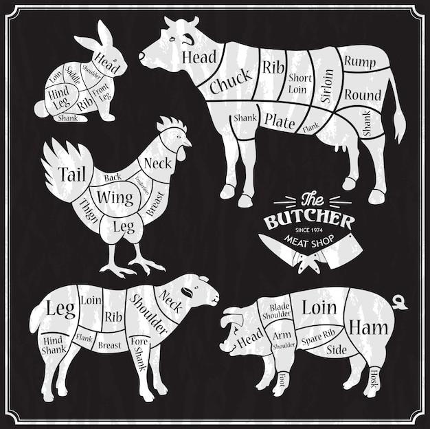 Dierlijke boerderij set. gesneden rundvlees, varkensvlees, lam, kip. Premium Vector
