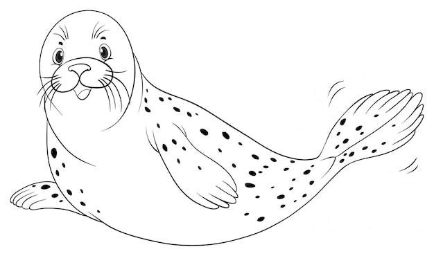 Dierlijke schets voor zeehond Gratis Vector