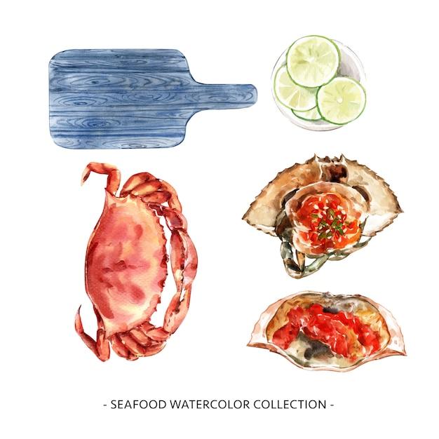 Diverse geïsoleerde illustratie van waterverfzeevruchten voor decoratief gebruik. Gratis Vector