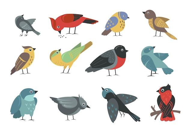 Diverse kleurrijke kleine vogels instellen Gratis Vector