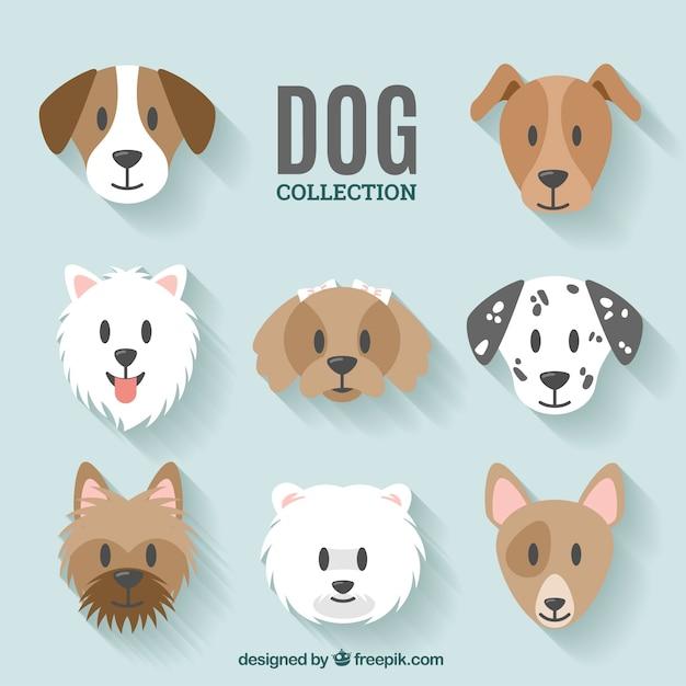 Dog collectie ontwerp Gratis Vector