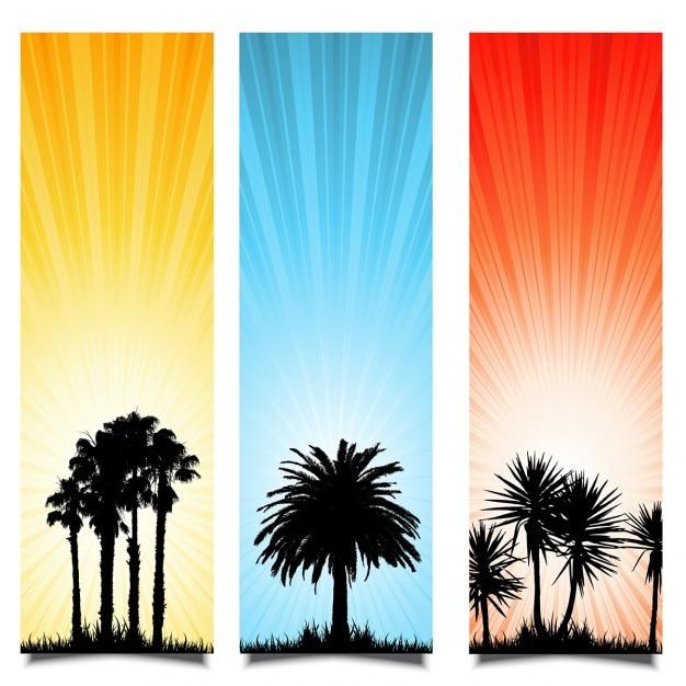 Drie zomer achtergronden met silhouetten van palmbomen Gratis Vector
