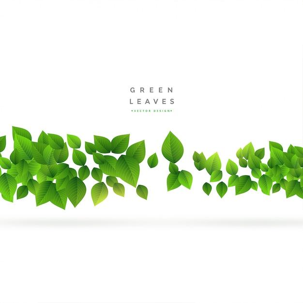 Drijvende groene bladeren op wit Gratis Vector