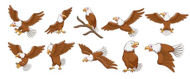 Eagle vector set Premium Vector