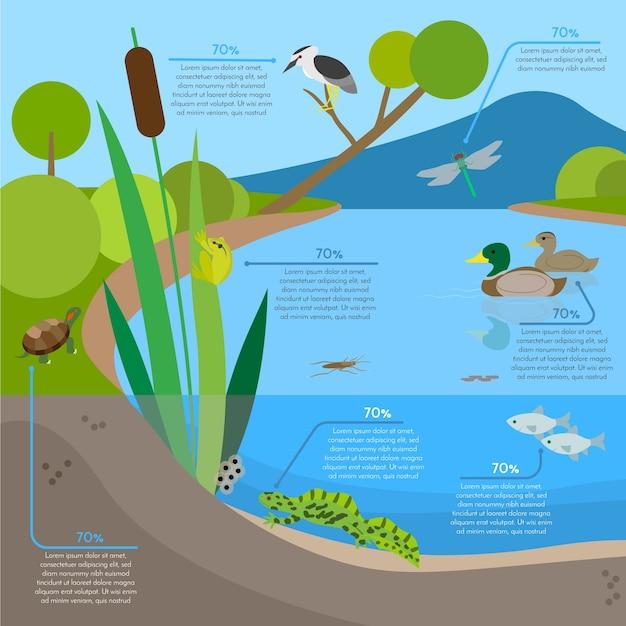 Ecosysteemachtergrond infographic met dieren in habitat Gratis Vector