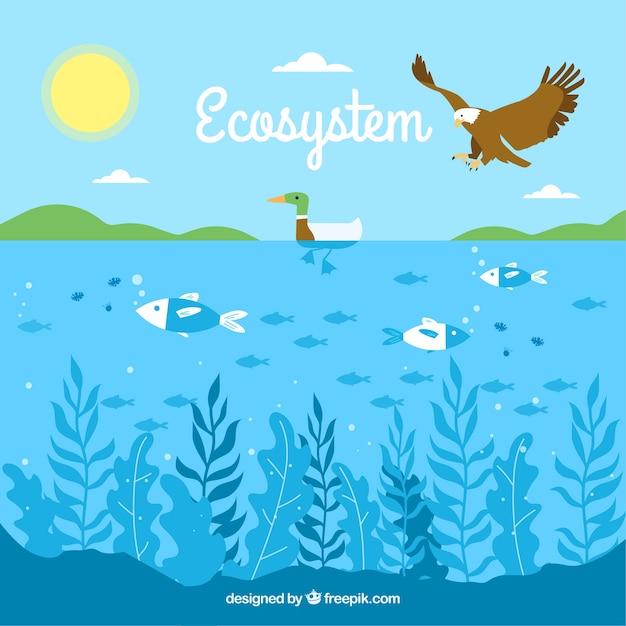 Ecosysteemconcept met adelaar en oceaan Gratis Vector