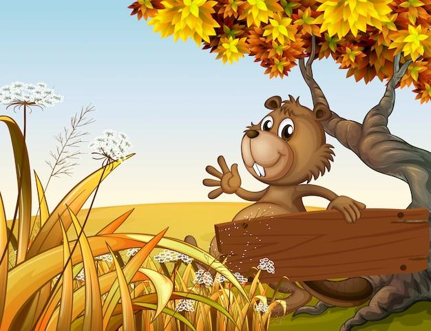 Een bever die onder de boom speelt terwijl hij een leeg houten bord vasthoudt Gratis Vector