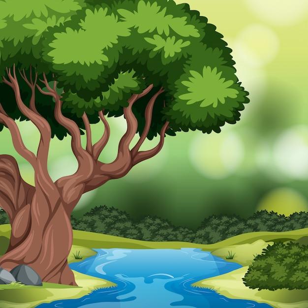 Een bos achtergrondscène Gratis Vector