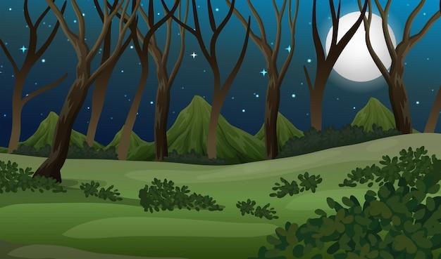 Een bos bij donkere nacht Premium Vector