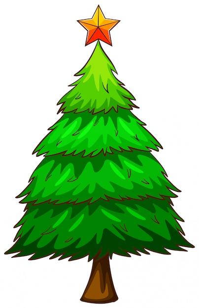Een gekleurde schets van een pijnboom Gratis Vector