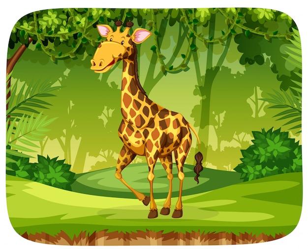 Een giraffe in het bos Gratis Vector