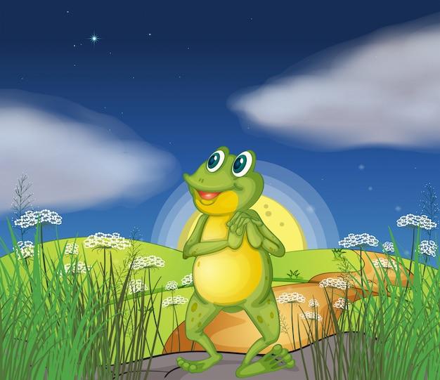 Een kikker die de heldere ster bekijkt Gratis Vector