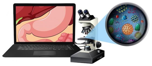 Een microscoop en maagbacterie Gratis Vector