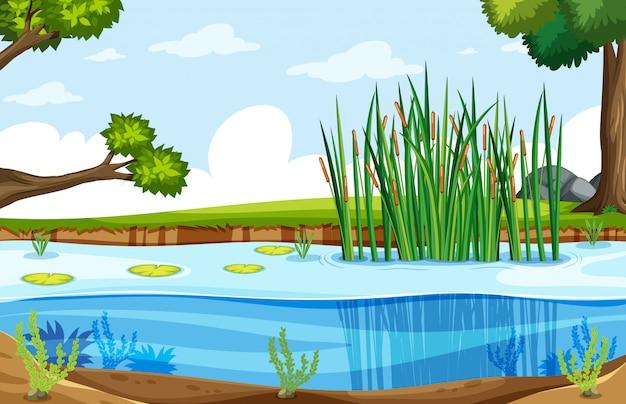 Een natuur moeraslandschap Gratis Vector