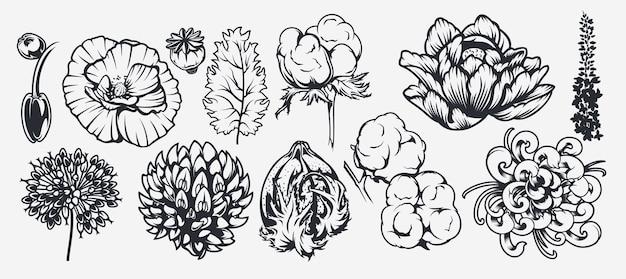 Een reeks illustraties op een bloementhema. kan worden gebruikt als ontwerpelement, achtergrond, decoratie, bedrukking op stof en voor vele andere toepassingen Premium Vector