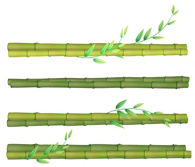 Een reeks van bamboe op witte achtergrond Premium Vector