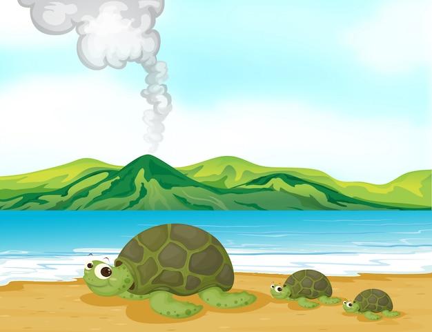 Een vulkaanstrand en schildpadden Gratis Vector