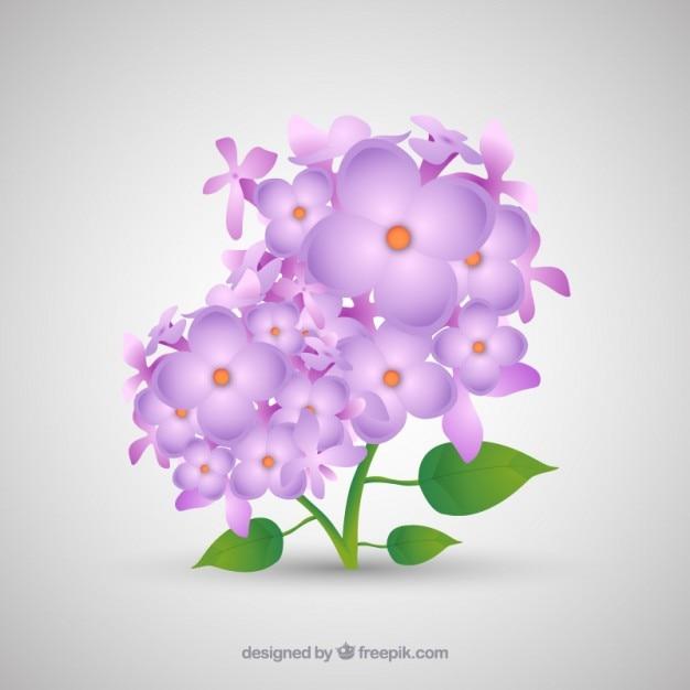 Eenvoudige boeket met lila bloemen Premium Vector