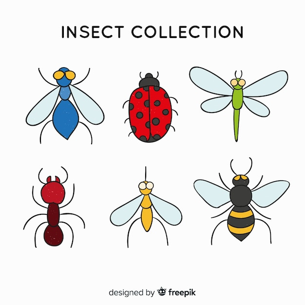 Eenvoudige insectencollectie Gratis Vector