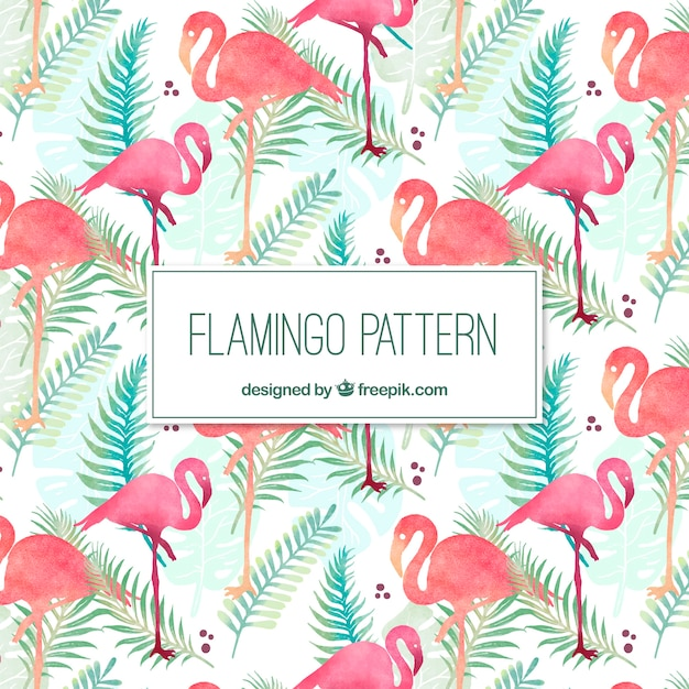 Elegant flamingopatroon Gratis Vector