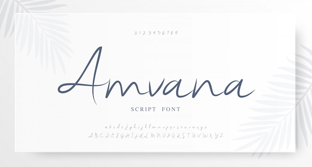 Elegant script klassiek lettertype lettertype alfabet Premium Vector