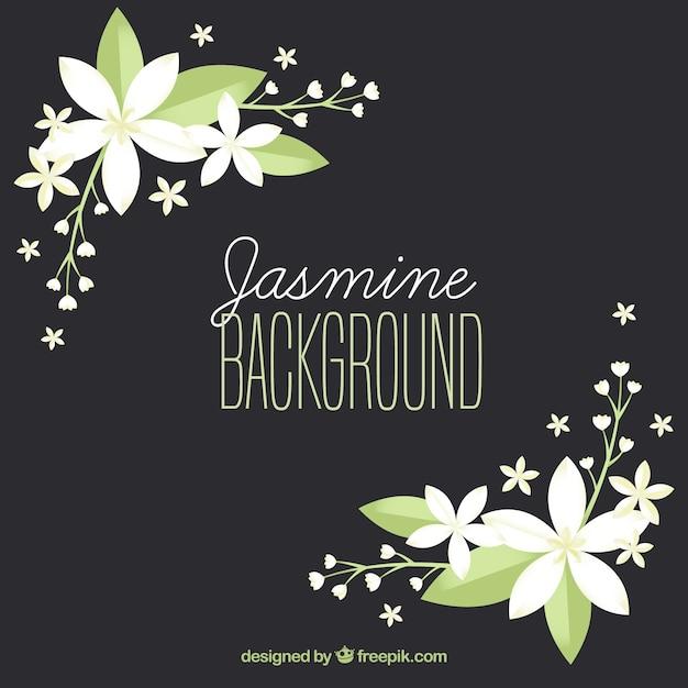 Elegante achtergrond met platte jasmijn Gratis Vector
