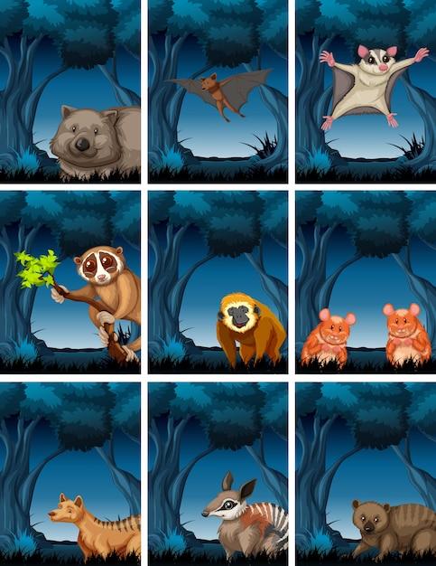 Exotisch dier in het bos Premium Vector