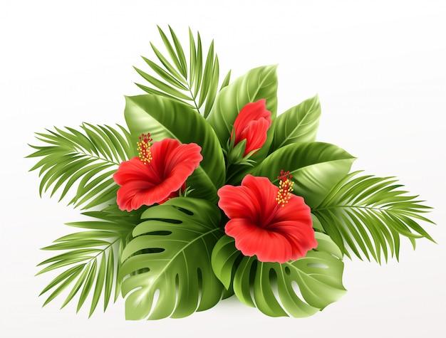 Exotische tropische hibiscusbloemen en monsterabladeren, palmbladeren van tropische planten op achtergrond. Premium Vector