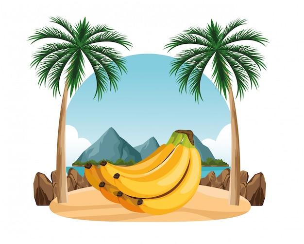 Exotische tropische vruchten pictogram cartoon Gratis Vector