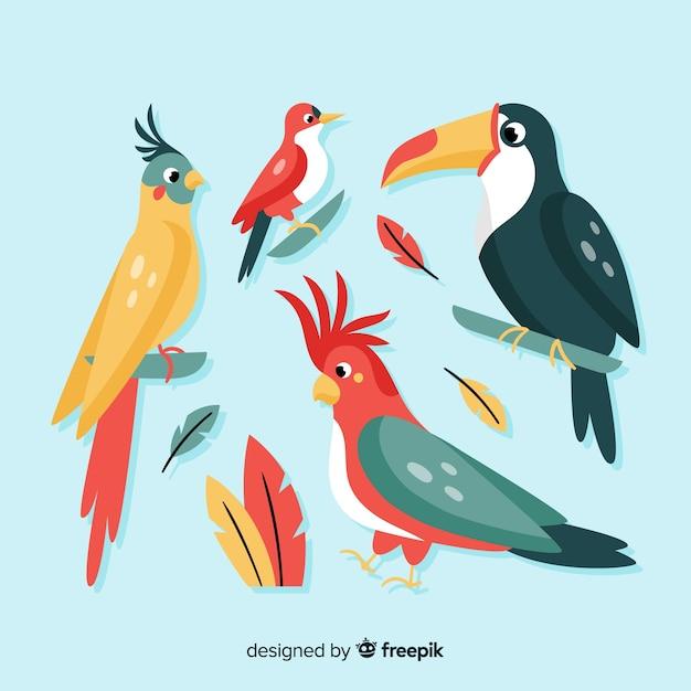 Exotische vogel collectie vlakke stijl Gratis Vector