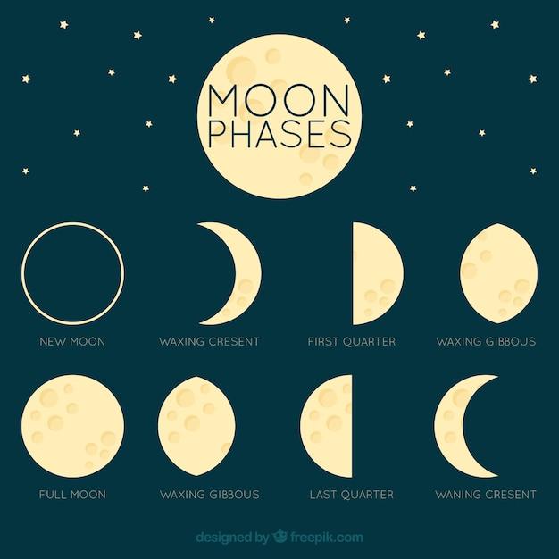 Fantastische maan in verschillende fasen Gratis Vector