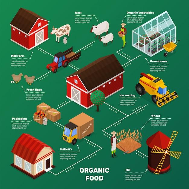 Farm food production flowchart Gratis Vector