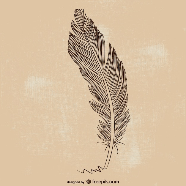 Feather pen illustratie Premium Vector