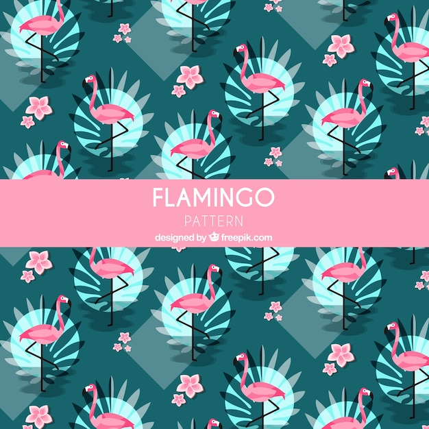 Flamenco zomer patroon Gratis Vector