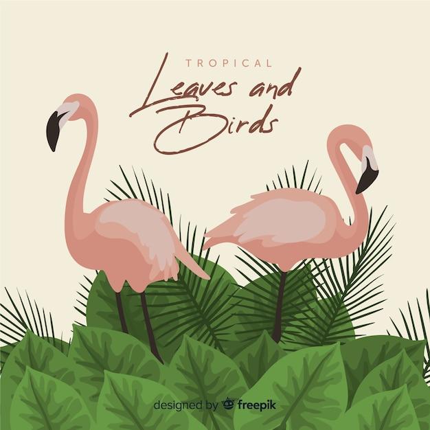Flamingo's en bladeren achtergrond Gratis Vector