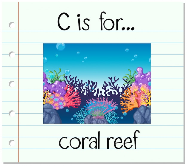 Flashcard letter c is voor koraalrif Gratis Vector