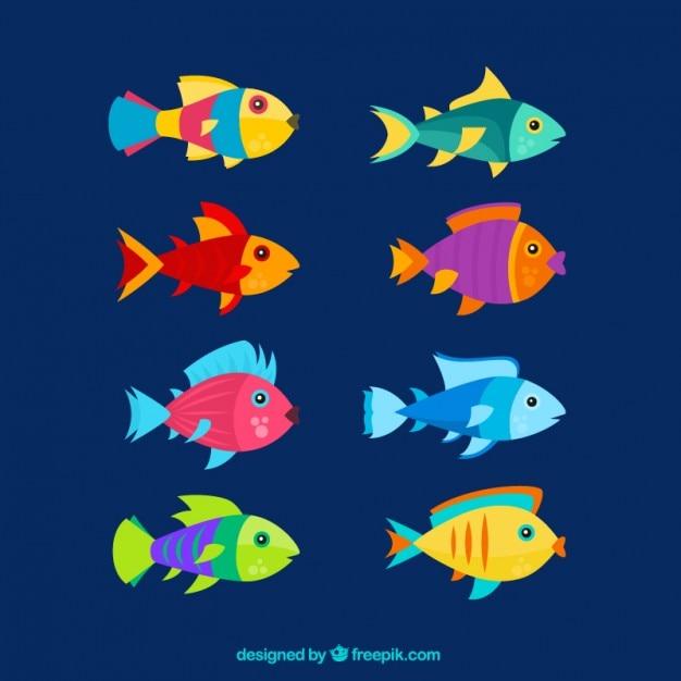 Flat kleurrijke vissen set Gratis Vector