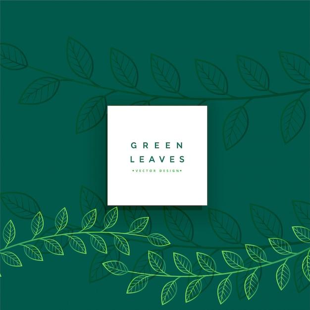 Floral groene lijn laat achtergrond Gratis Vector