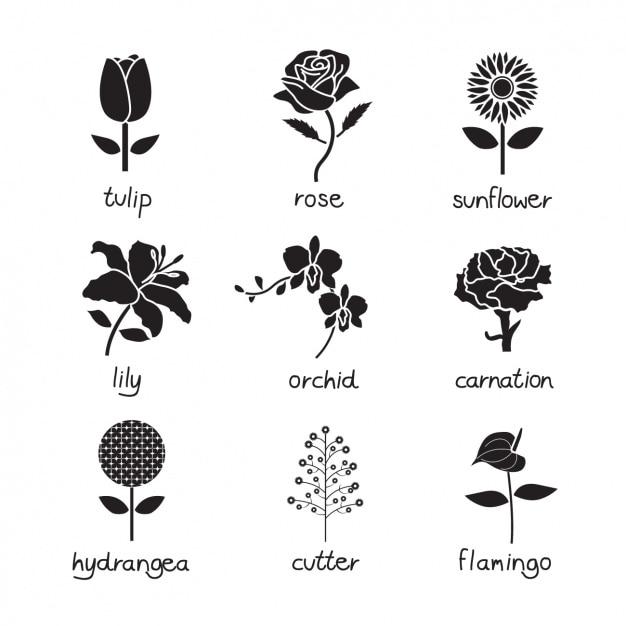 Flower iconen collectie Gratis Vector