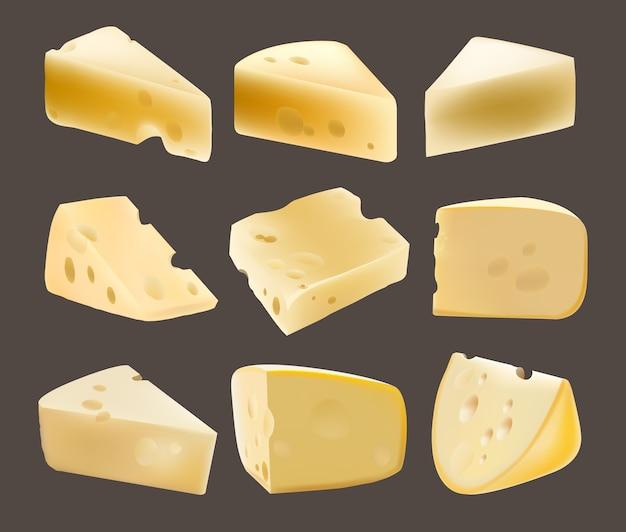 Forfaitaire kaas. zuivelproducten. realistische illustratie. gaten. nederlands. de parmezaanse kaas. verschillende soorten kaas. eten. gouda. gezond eten Premium Vector