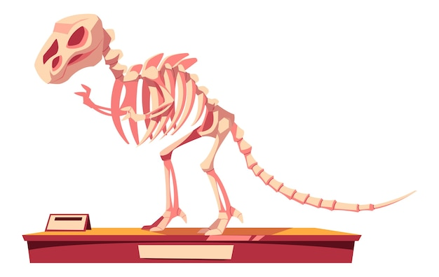 Fragment van dinosaurusskelet Gratis Vector