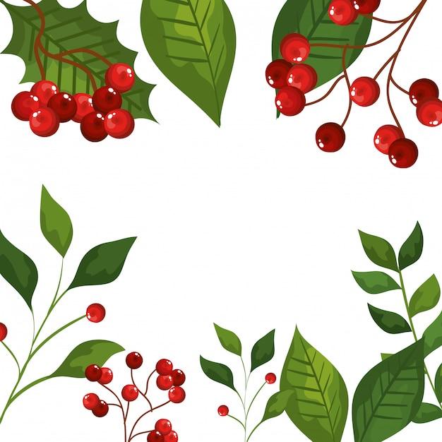 Frame van bladeren en takken met zaden kerstmis pictogrammen Gratis Vector