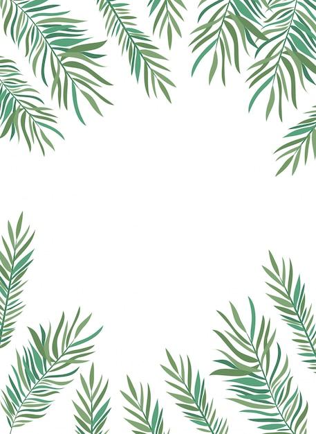 Frame van tak met blad van de zomer op witte achtergrond Premium Vector